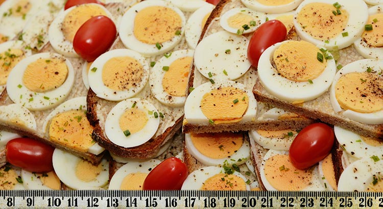 The Boiled Egg Diet Lose 22 Pounds In 2 Weeks Fitmozine